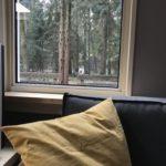 uitzicht vakantiehuisje te huur in het bos